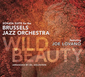 Brussels Jazz Orchestra - Wild Beauty