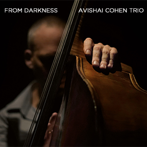 Avishai Cohen Trio 1