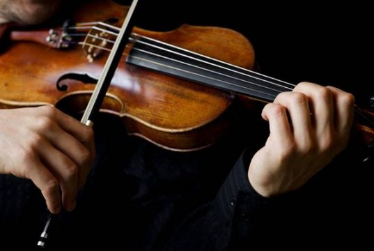 Is Violin a Good Investment?